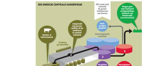Bio Energie Centrale Harderwijk maakt biogas uit koeienpoep en graan