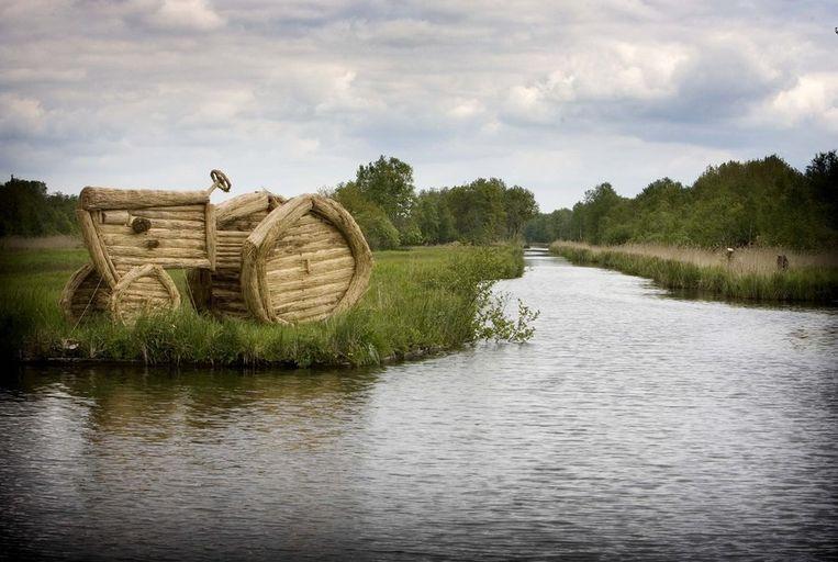 In natuurgebied de Weerribben is riet en gras voor biomassa beschikbaar. Beeld anp