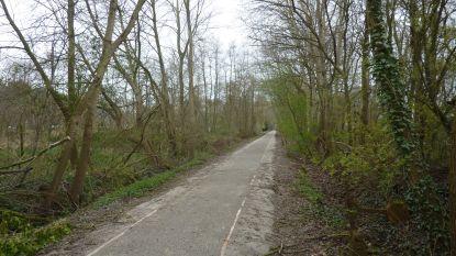 Oude spoorweg in Engels Kamp omgevormd tot fietspad