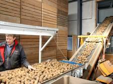 Frites populair:  Agrico draait recordweek