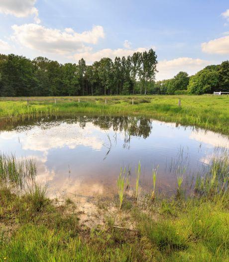 Overijssel valt in de smaak bij Nederlandse vakantieganger