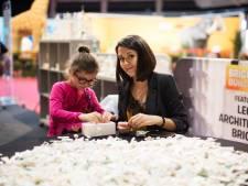 L'expo Bricklive pose ses 5 millions de briques Lego à Bruxelles