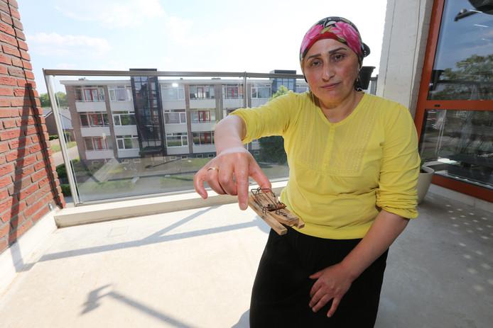 """De rattenplaag loopt uit de hand, bemerkt Hatice Pelite. ,,Alleen afgelopen week heb ik al vijf ratten gevangen."""""""