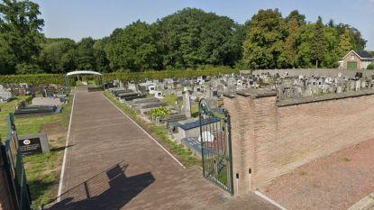 """Verharde paden op Bilzerse kerkhoven verdwijnen: """"We maken er groene oases van"""""""