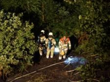 Sigarettenpeuk mogelijk oorzaak nachtelijke bosbrand op Grebbeberg