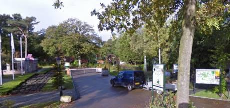 Resort Reestervallei in IJhorst vervangt alle chalets en caravans