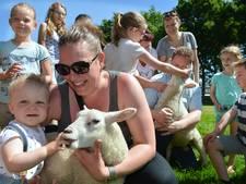 IJsselstein heeft weer een eigen kinderboerderij