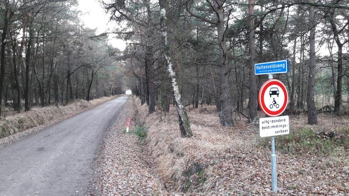 Het bos aan de Huttenveldsweg, langs de Wolfkaterweg tussen Beckum en Bentelo.