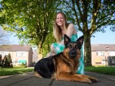 Aika uit Enter is de mooiste hond van Overijssel