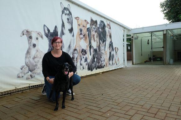 Nathalie Vanassche van Dierenasiel Schoten met een van de bewoners, de hond Lady.