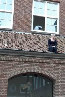 Redders zitten zelf vast op dak na helpen hond in Tiel