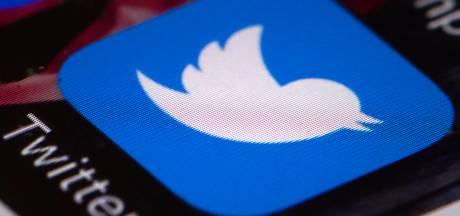 Nieuwe meldknop Twitter moet desinformatie tijdens EU-verkiezingen tegengaan