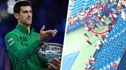 De topper die het minst geliefd is bij de fans, maar hen wel het meest geeft: het trieste lot van Djokovic