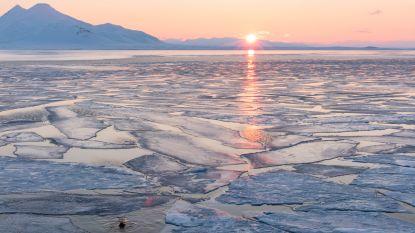 """Warmste winter ooit op de Noordpool: """"Nooit geziene situatie"""""""