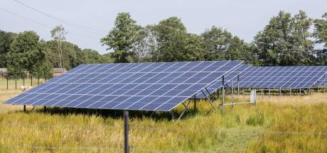 Lingewaard staat zonnepanelen op de grond toe