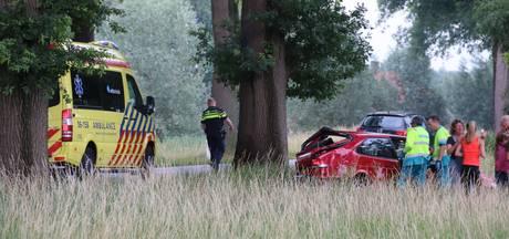 Auto rijdt tegen boom in Ruurlo