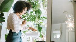 5 tips om je planten de hitte te laten overleven
