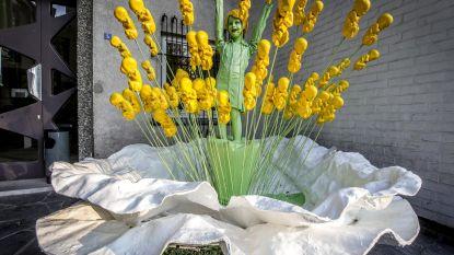 Witte klaproos voor vrede prijkt aan Groenhove