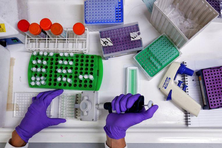 Een laborant doet onderzoek. Beeld REUTERS