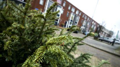 Inzamelactie kerstbomen