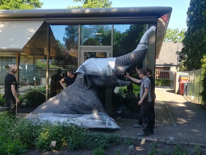 De mastodont die in de nieuwe paleontologiehal van het museum Klok en Peel komt.
