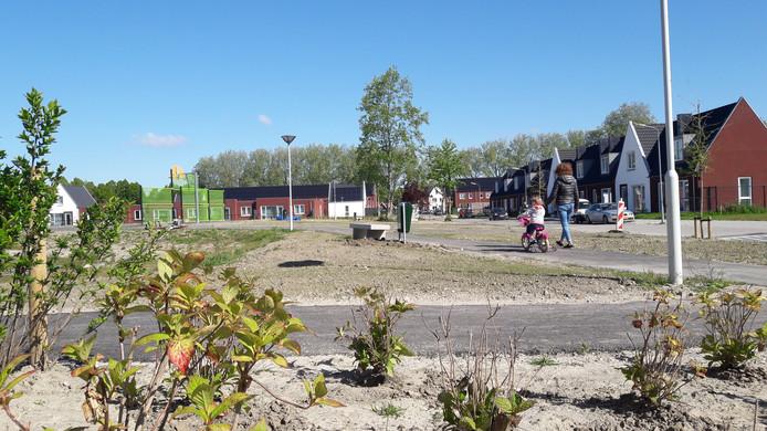 Rozenpark in vernieuwd deel Terneuzense wijk Lievenspolder.