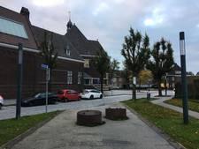 Vandalist heeft het gemunt op Enschedese plantenbakken