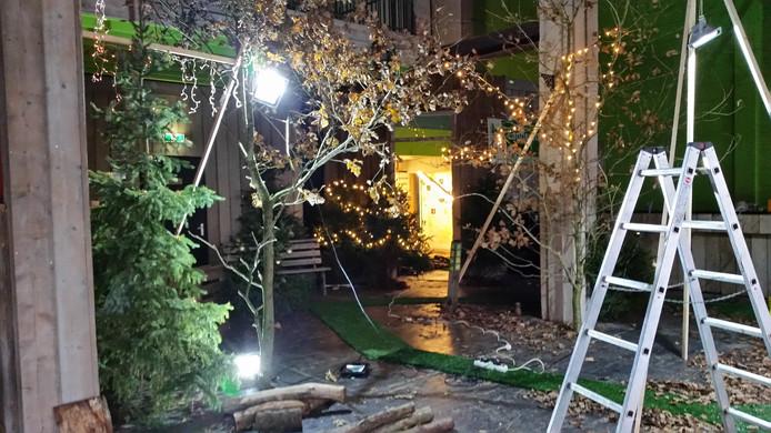 Landschapsbeheer legt de laatste hand aan het 'indoorbos' van Osje op Wal 20.