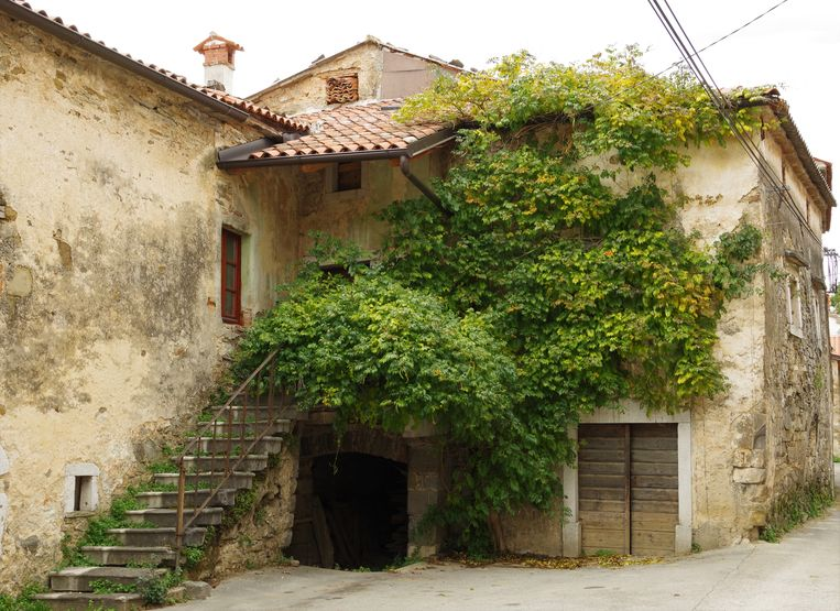 Ingang van een middeleeuwse wijnkelder. Beeld Esther te Lindert
