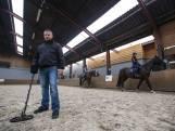 Zoektocht naar een trouwring tussen de paardenhoeven in Markelo
