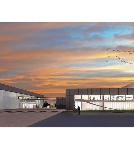 Insectenkweker Protix bouwt fabriek in Den Bosch