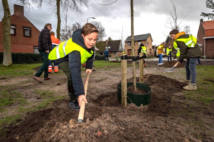 Leerlingen van de Meulenrakkers planten bomen in Calfven.