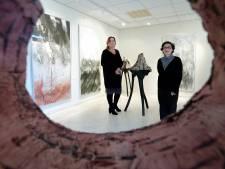 Kunstenaars exposeren samen in Schijf: 'Ons werk kent vele overeenkomsten'
