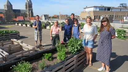 Eerste groenten groeien op het dak van parkeertoren