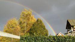 Feest in regenboogland: heb jij ook een prachtexemplaar gespot?