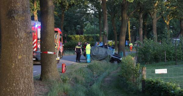 Automobilist overleden bij botsing tegen boom in Erp.