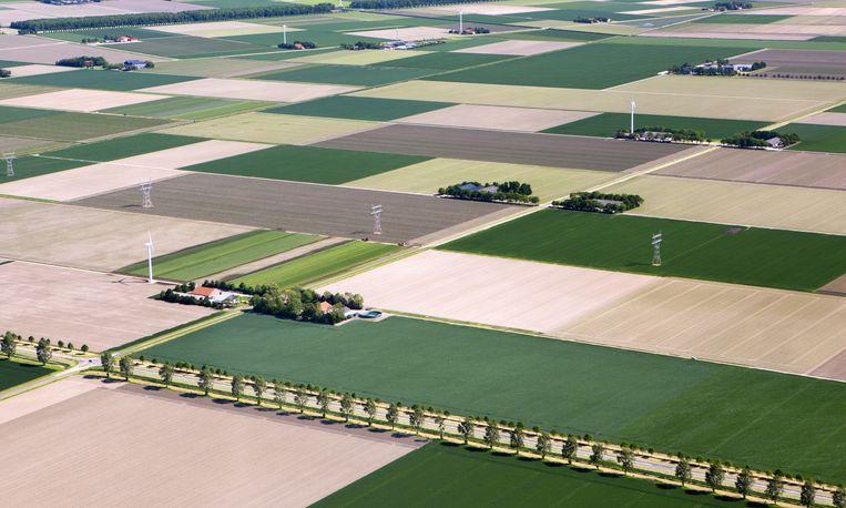 Boerderijen in Dronten met windmolens. Ondernemers en boeren vervangen eerder hun turbine dan dat ze deelnemen aan een nieuw te bouwen windpark. Beeld Frans Lemmens / HH