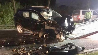 Auto botst tegen boom: bestuurder (42) lichtgewond naar het ziekenhuis
