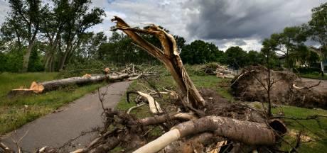 Opruimen van omgewaaide bomen in Zuidoost-Brabant kost miljoenen