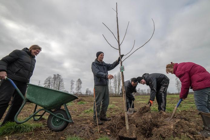De eerste okkernoot, zoals een walnoot ook wel heet, is inmiddels symbolisch geplant door Jantien en Arend van Imhoff en drie 'hulpboeren'.