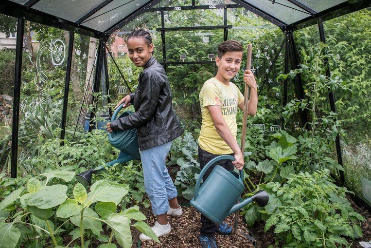 Mohammed Aswad en Mashael Elsayed voelen zich echte tuiniers.