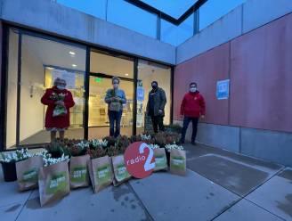 Radio 2 schenkt tulpenmuur aan wzc Villa Rosa