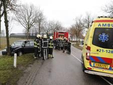 Man gewond na botsing met boom in Rijkevoort