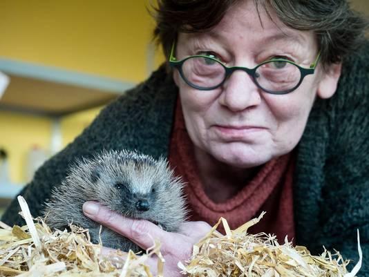 Wilma Klomp van de Egelopvang in Boskoop