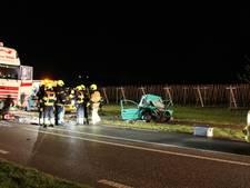 Slachtoffers dodelijk ongeluk op N320 bij Ingen van Poolse komaf