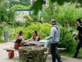 'Jezelf of je eigen stad geweldig vinden, is on-Arnhems'