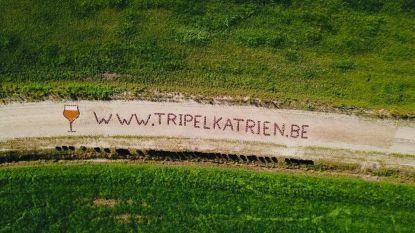 Tripel Katrien heeft eigen website: intiatiefnemers pakken uit met indrukwekkende stunt als promotie