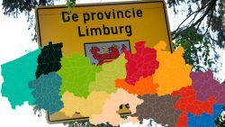 Kleine verkiezing, grote kanonnen: dit zijn de nationale kopstukken die in jouw gemeente opkomen voor de provincies