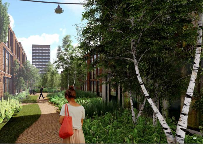 Sfeerbeeld van de Fabriekskwartier: geen standaard straatjes maar groen tot aan de gevel van grotere woongebouwen.