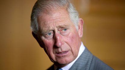 Record voor prins Charles: nog nooit was iemand zo lang troonopvolger